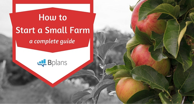 How To Start A Farm Your Complete Guide To Success